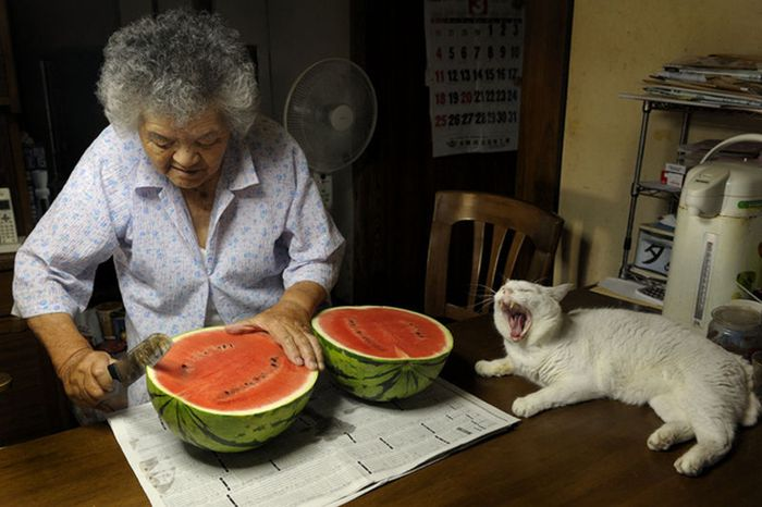 Best Friends Forever (28 pics)