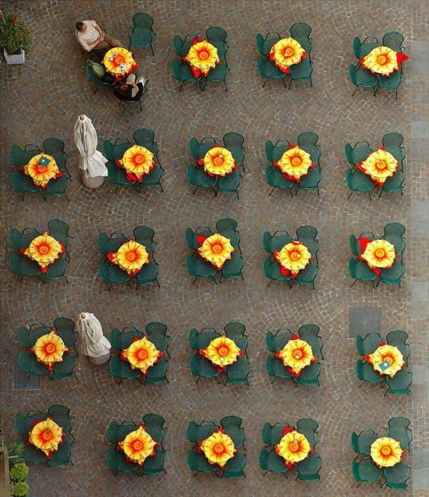 Beauty of Multiplicity (37 pics)