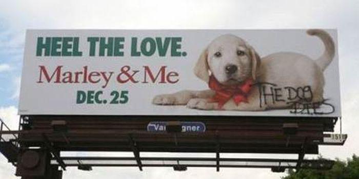 Billboards Enhanced By Graffiti (40 pics)