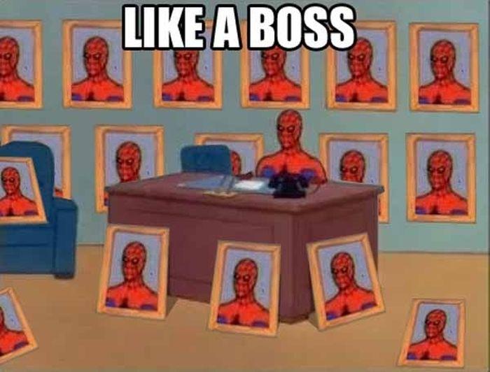Spider-Man Meme (26 pics)