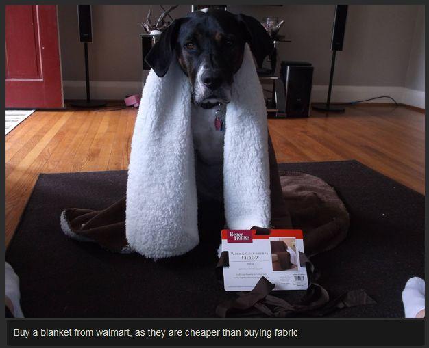 DIY Dog Backpack (11 pics)