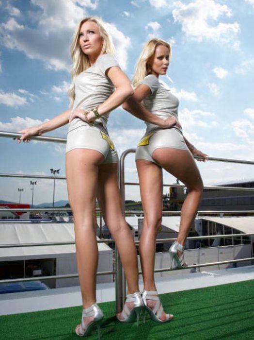 Grid Girls of Motorsport (101 pics)