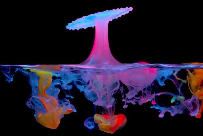 Liquid Drop Art by Corrie White (10 pics)