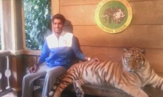 Taking Photo With Tiger Gone Wrong