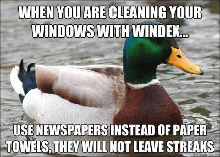 Actual Advice Mallard Meme (22 pics)