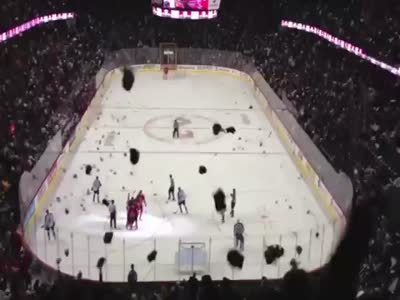 Thousands of Teddy Bears Thrown on The Hockey Field