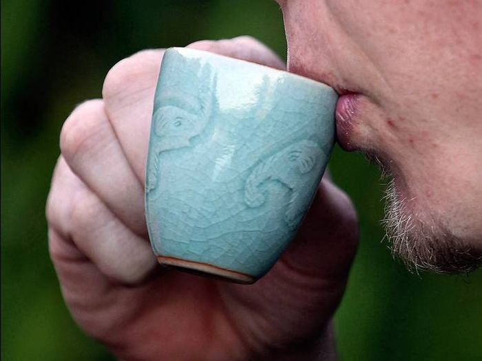 Coffee from an Elephant's Gut (9 pics)