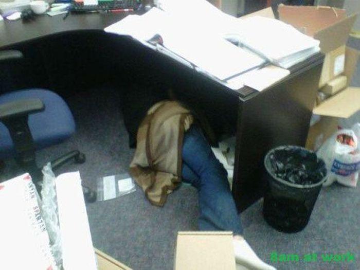 I Hate My Job. Part 8 (50 pics)