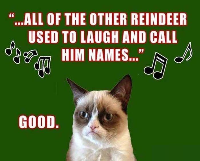 Grumpy Cat Christmas (12 pics)