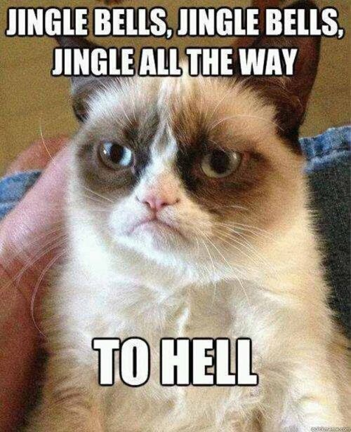 Grumpy Cat Christmas (12 pics)