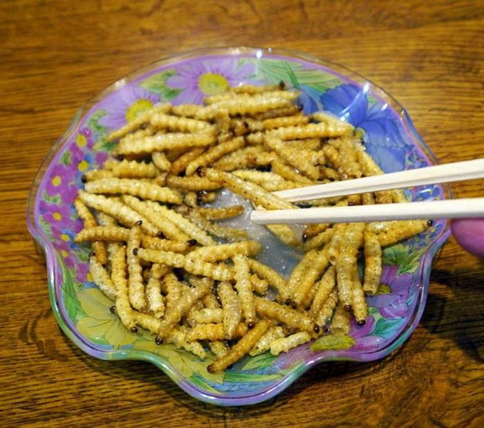 Disgusting Chinese Food (7 pics)