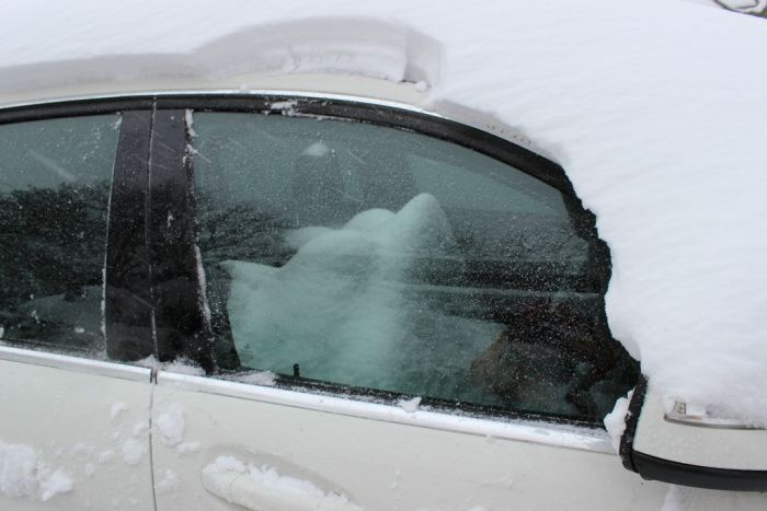Always Keep Your Car's Sunroof Closed in Winter (3 pics)