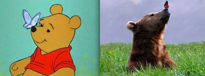 Animals. Animation vs Real Life (20 pics)