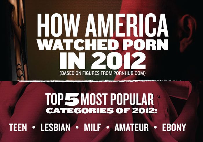 How America Watched Porn in 2012 (infographic)