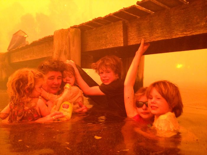 Family Sheltering in the Water (5 pics)