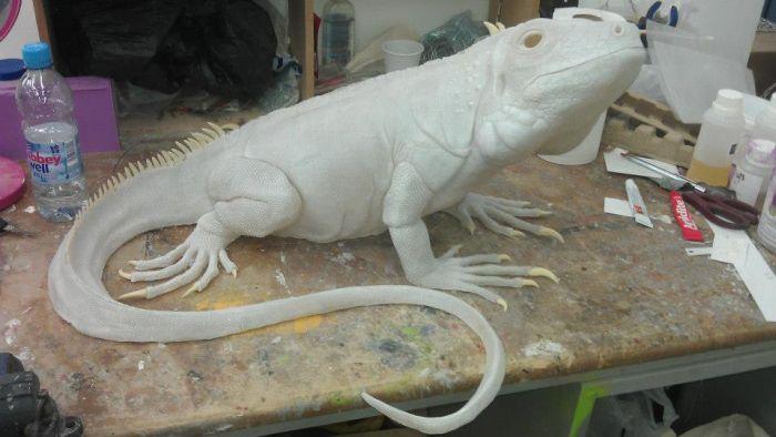 Let's Make a Lizard (20 pics)