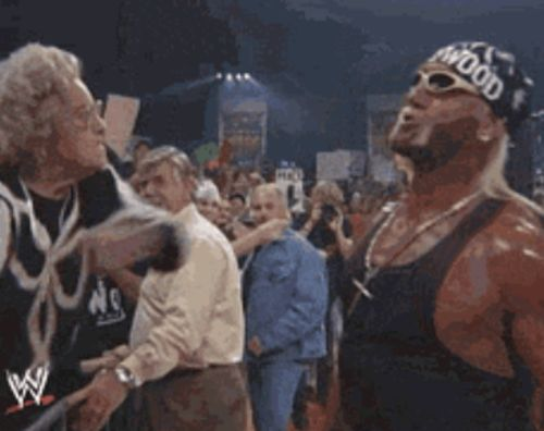 Funny Wrestling Moments (50 gifs)