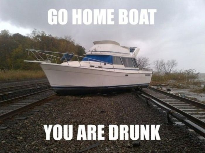 Go Home, You're Drunk (23 pics)