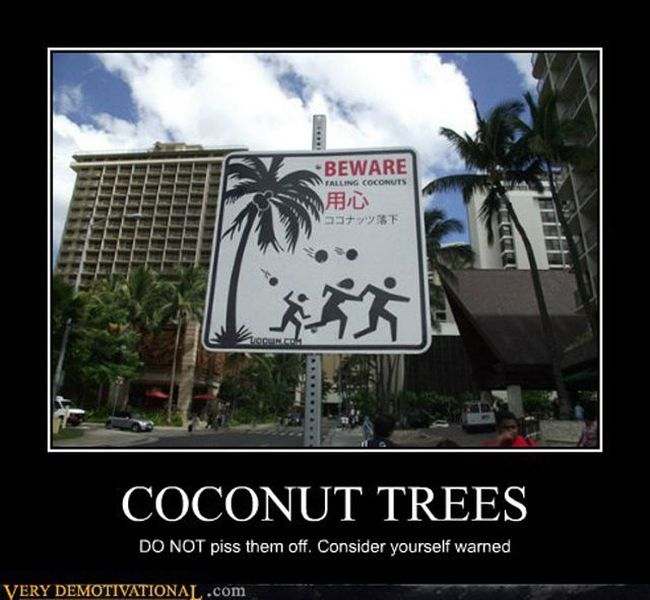 Funny Demotivational Posters (32 pics)