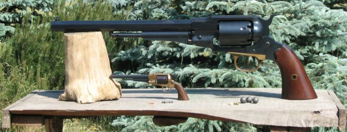 Remington Model 1859 (9 pics)