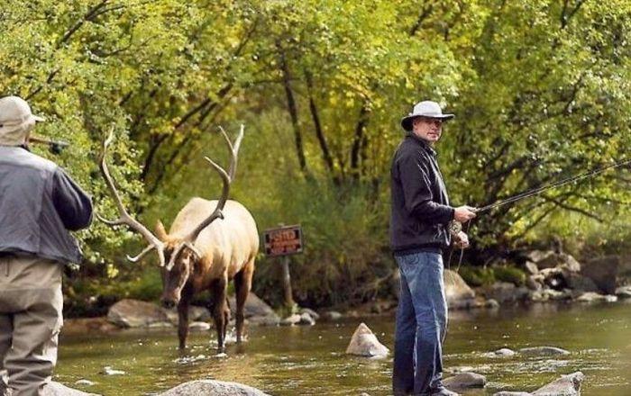 Fishing Fail in Canada (5 pics)