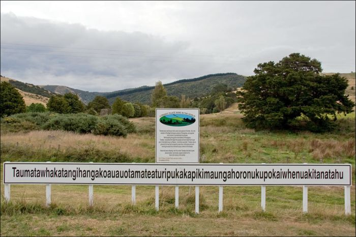 Taumata Hill, New Zealand (6 pics)