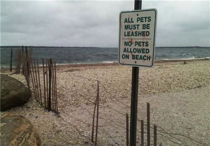 Dose of Irony (46 pics)