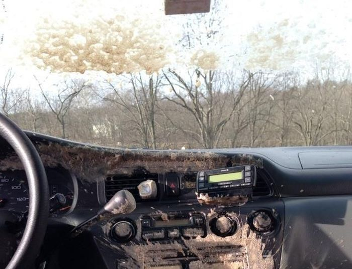 Can of Soda Inside a Frozen Car (3 pics)