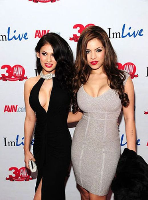 2013 AVN Awards Photos (59 pics)