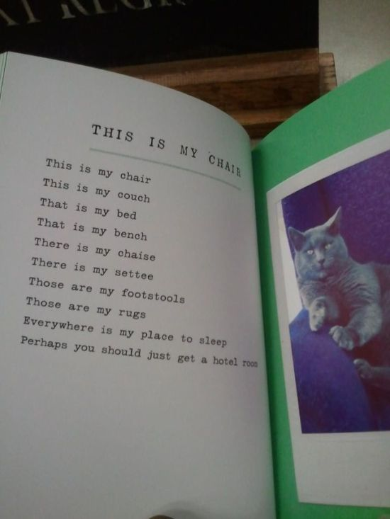Poems by Cats (9 pics)