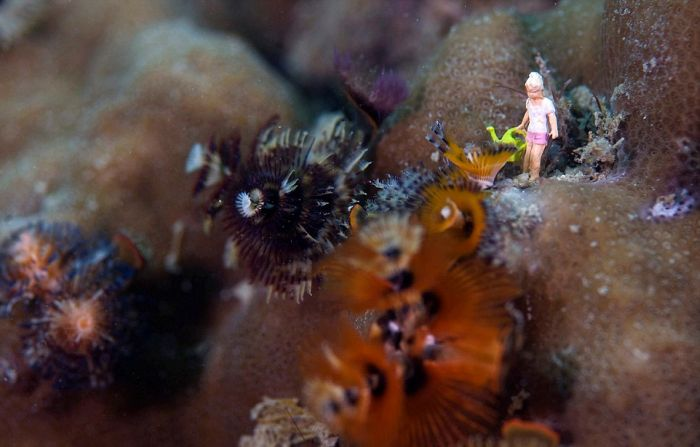 Toy Figures in Underwater Scenes (20 pics)