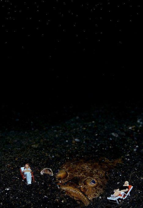 Toy Figures in Underwater Scenes (20 pics)