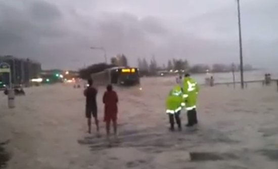 Unexpected Surprise During a Flood