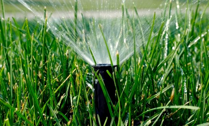 What Happens if You Use Lawn Sprinkler in Winter (3 pics)