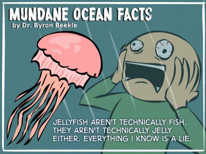 Interesting Ocean Facts (7 pics)
