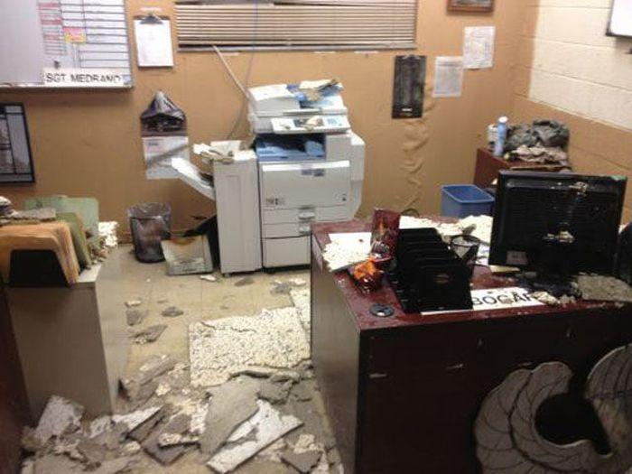 I Hate My Job. Part 9 (42 pics)