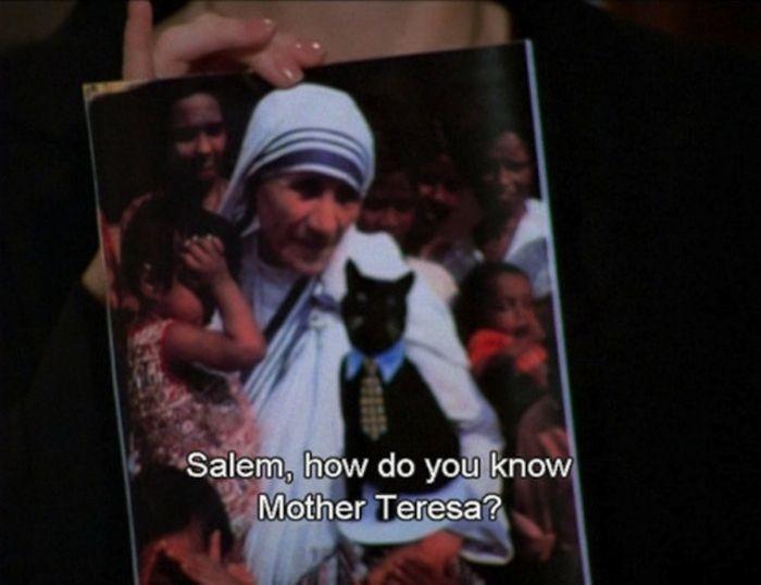 Things Said by Salem Saberhagen (43 pics)