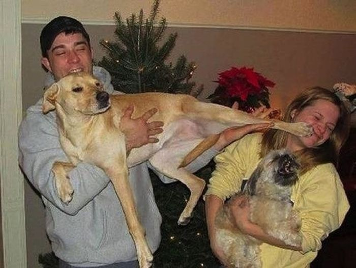 WTF Pictures Of People Posing With Animals (49 pics)