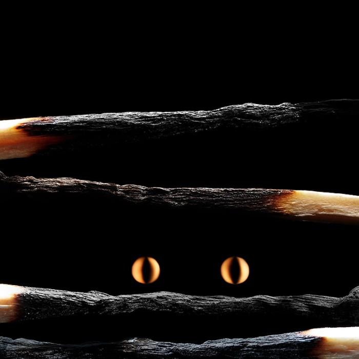 Matchstick Art (25 pics)