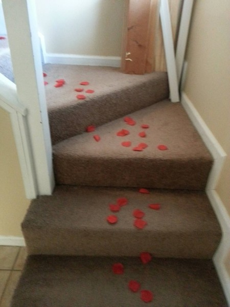 Trolling a Roommate on Valentine's Day (5 pics)