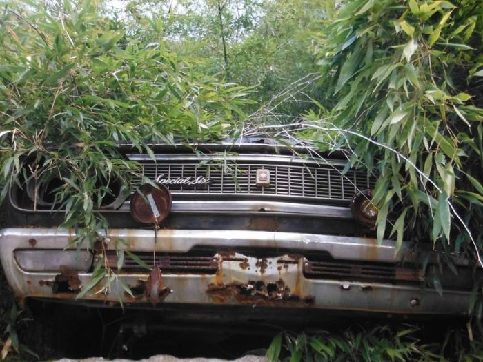 Abandoned Car Graveyard in Japan (60 pics)