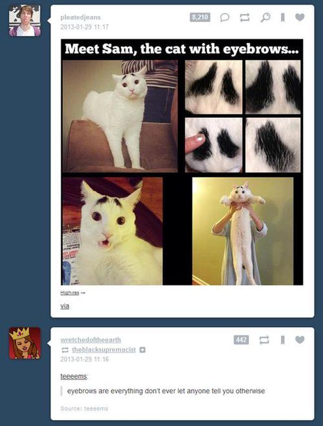 Funny Tumblr Coincidences (20 pics)