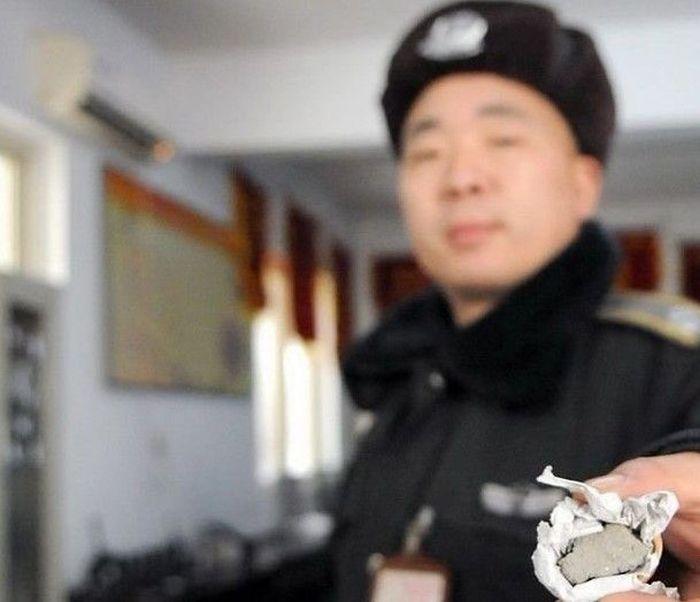 Chinese Walnuts (5 pics)