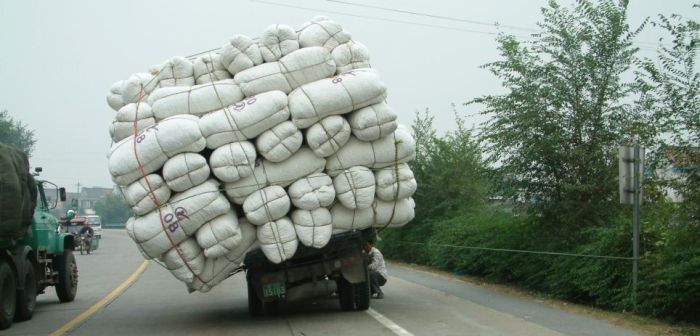 Wide Loads in China (24 pics)