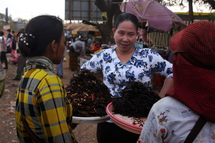 Cambodian Fried Spiders (16 pics)