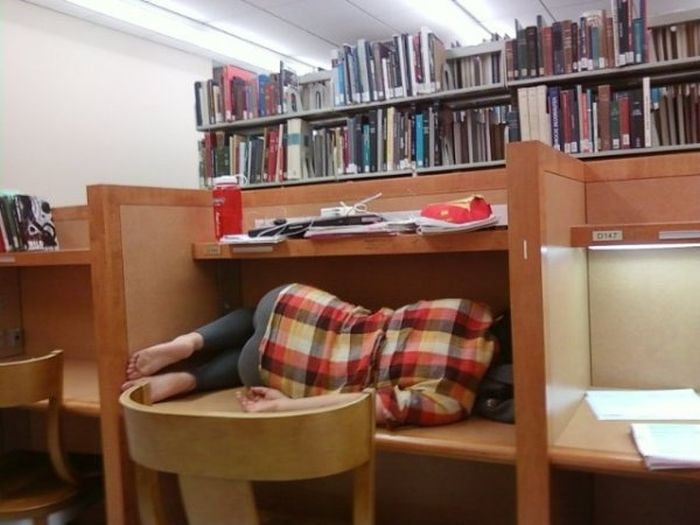 College: Expectations Vs. Reality (30 pics)