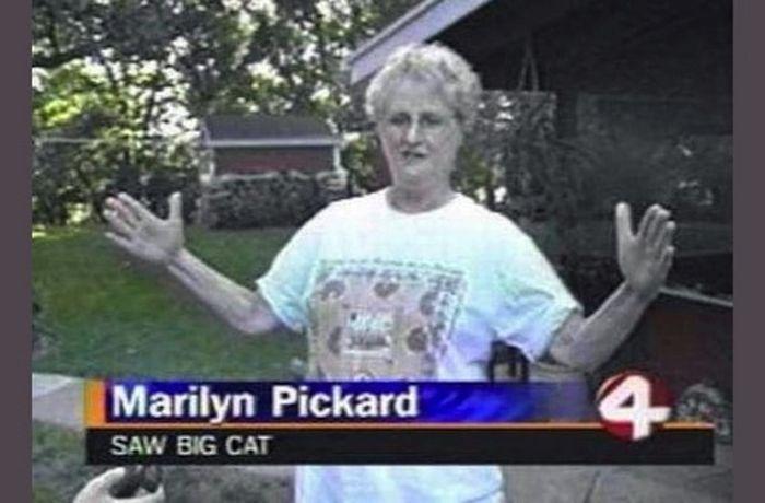 Weird Local News Captions (38 pics)
