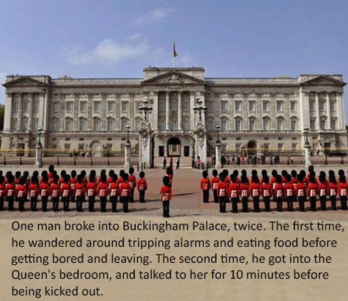 Collection of Interesting Facts (30 pics)