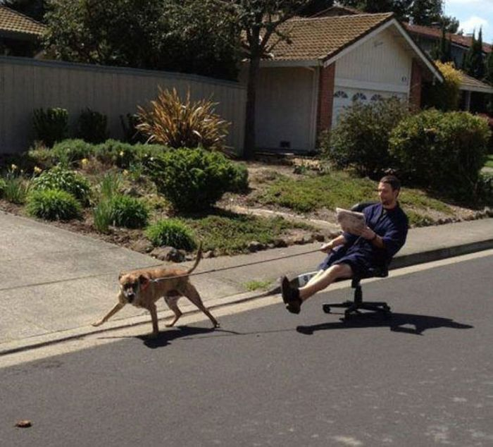 It's All About Laziness (41 pics)