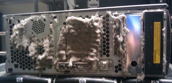 Very Dirty PCs (40 pics)